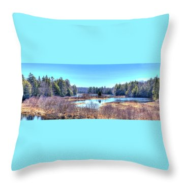 Throw Pillow featuring the photograph Spring Scene At The Tobie Trail Bridge by David Patterson