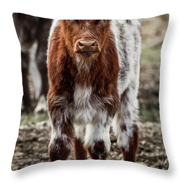 Spring Baby Throw Pillow