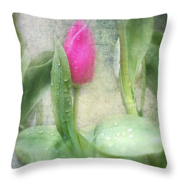 Spring Bath Throw Pillow