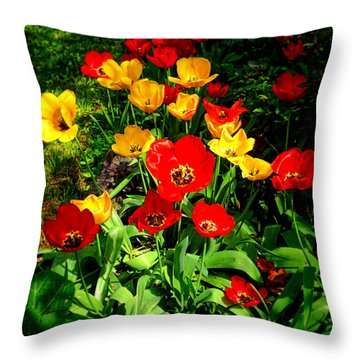 Spring Beauty Throw Pillow by Olivier Le Queinec