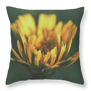 Spring Beginning Throw Pillow