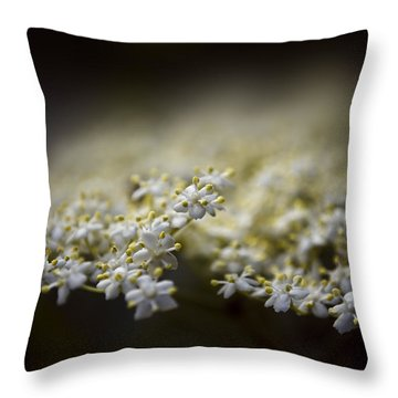 Spring Bloom Throw Pillow by Svetlana Sewell