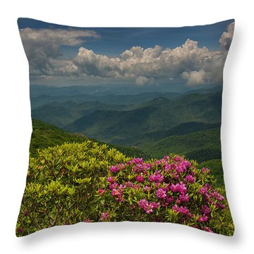 Spring Blooms On The Blue Ridge Parkway Throw Pillow