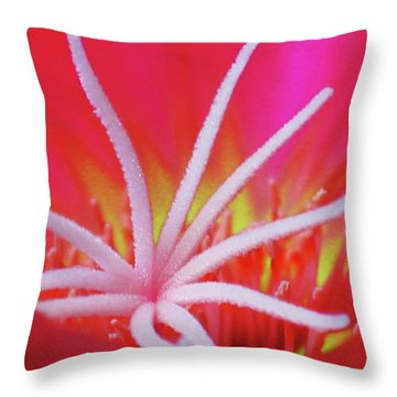 Spring Blossom 19 Throw Pillow by Xueling Zou