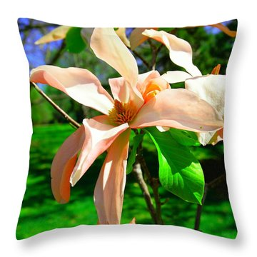 Throw Pillow featuring the photograph Spring Blossom Open Wide by Jeff Swan