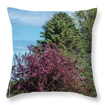Throw Pillow featuring the photograph Spring Blossoms by Paul Freidlund