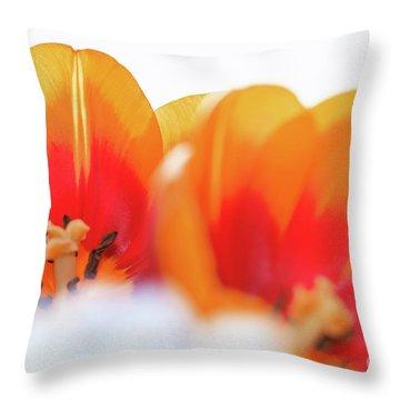 Spring Breeze Throw Pillow