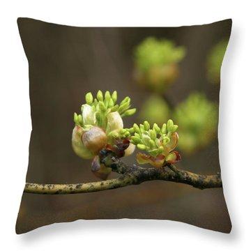 Spring Buds 9365 H_2 Throw Pillow