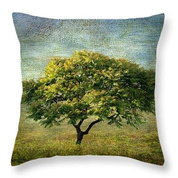 Spring Canvas Throw Pillow