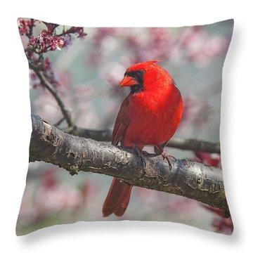 Spring Cardinal 2 Throw Pillow