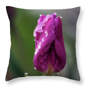 Spring Coat Throw Pillow