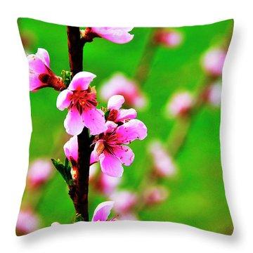 Spring Color Throw Pillow by Thomas R Fletcher