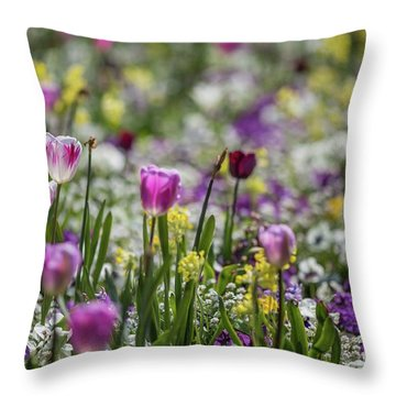 Spring Colors Throw Pillow by Eva Lechner