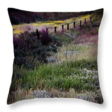 Throw Pillow featuring the photograph Spring Colors by Kelly Wade