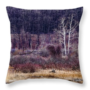 Throw Pillow featuring the photograph Spring Colors by Tom Singleton