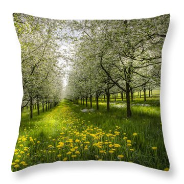 Spring Colors1 Throw Pillow by Bruno Santoro