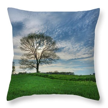 Throw Pillow featuring the photograph Spring Coming On by Bill Pevlor