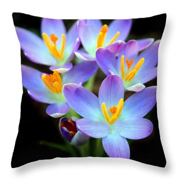 Throw Pillow featuring the photograph Spring Crocus by Jessica Jenney