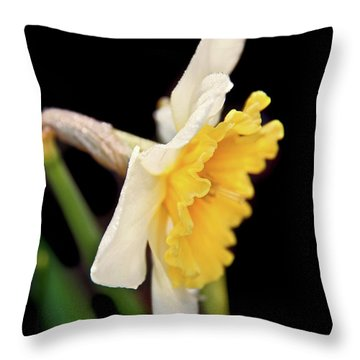 Throw Pillow featuring the photograph Spring Daffodil Flower by Jennie Marie Schell