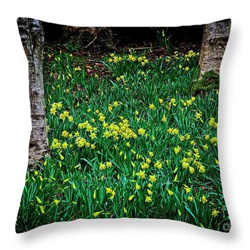 Spring Daffoldils Throw Pillow