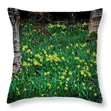 Spring Daffoldils Throw Pillow