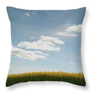 Spring Day Clouds Throw Pillow