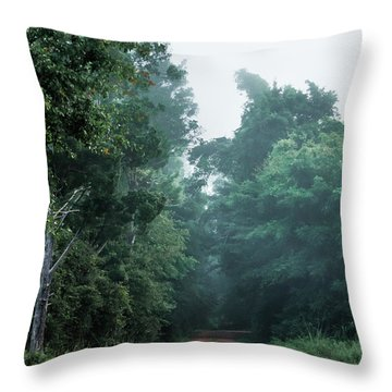 Throw Pillow featuring the photograph Spring Dirt Road by Shelby Young