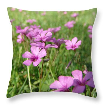 Spring Dream Throw Pillow by Andrew King
