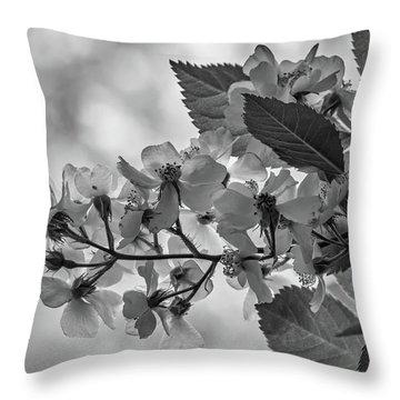 Spring Dream Bw Throw Pillow
