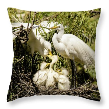 Spring Egret Chicks Throw Pillow by Robert Frederick