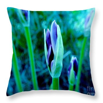 Throw Pillow featuring the photograph Spring Erupting Early by Marsha Heiken