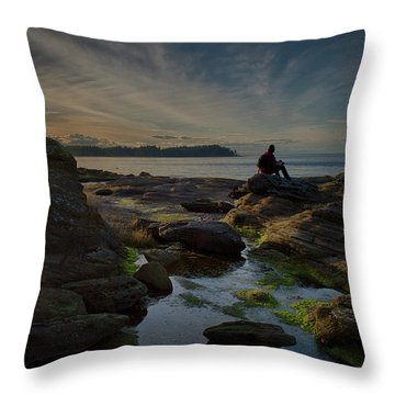 Spring Evening Throw Pillow by Randy Hall