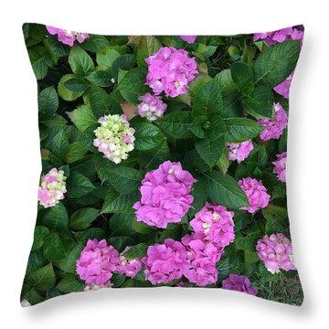 Spring Explosion Throw Pillow
