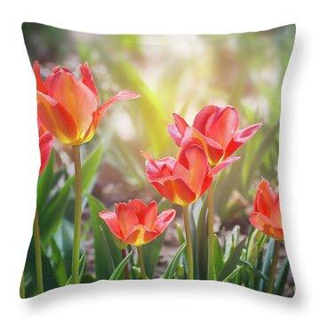 Spring Favorites Throw Pillow