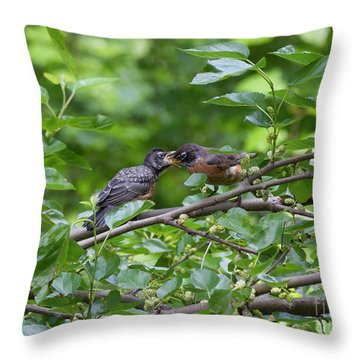 Throw Pillow featuring the photograph Down The Hatch by Chris Scroggins
