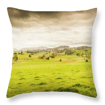 Spring Field In Springfield Throw Pillow