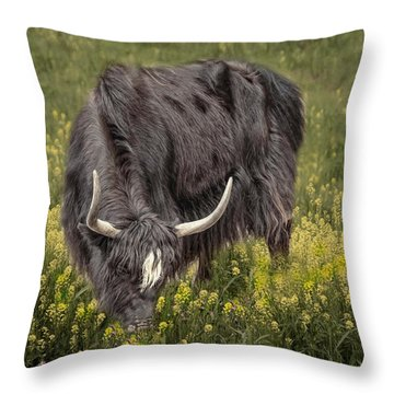 Throw Pillow featuring the photograph Spring Fields by Robin-Lee Vieira
