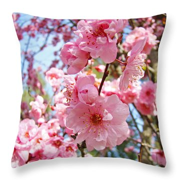 Spring Floral Art Prints Pink Tree Blossoms Throw Pillow by Baslee Troutman