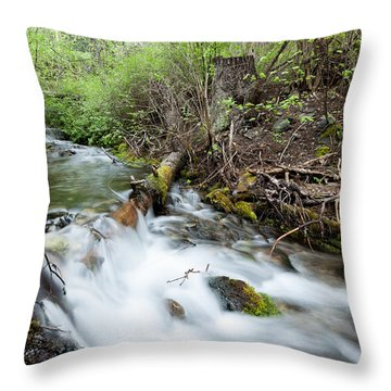 Throw Pillow featuring the photograph Spring Flow by Fran Riley