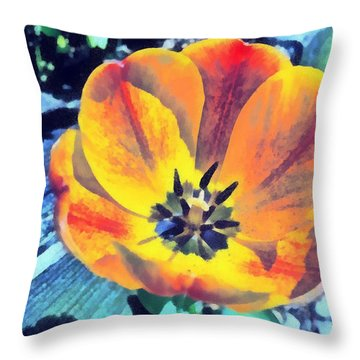 Throw Pillow featuring the photograph Spring Flower Bloom by Derek Gedney