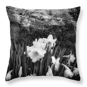 Spring Flowers And Lichen Covered Boulder - B/w 1c Throw Pillow by Greg Jackson