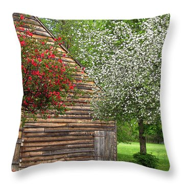 Spring Flowers And The Barn Throw Pillow