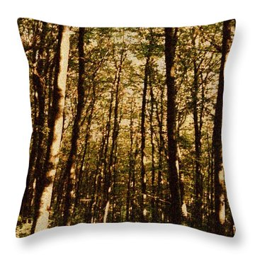 Throw Pillow featuring the photograph Spring Forest by Jean Bernard Roussilhe