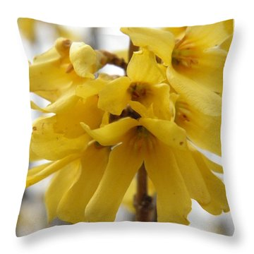 Spring Forsythia Blossoms Throw Pillow by Angie Runyan