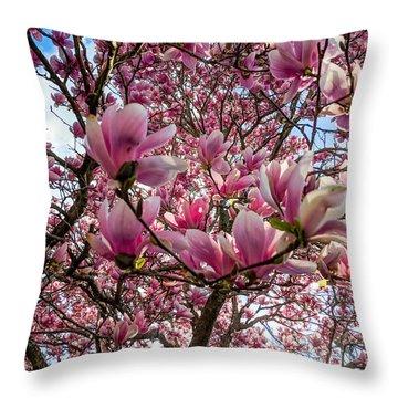 Spring Fractals Throw Pillow