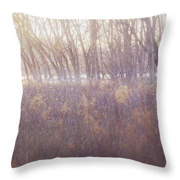 Spring Frost Throw Pillow