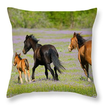 Spring Gallop Throw Pillow