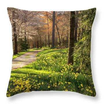 Spring Garden Path Throw Pillow