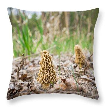 Spring Gathering Throw Pillow