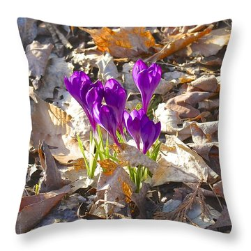 Spring Gathering Throw Pillow